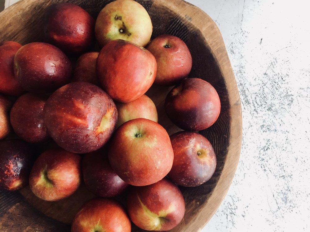 Winesap Apples /  Scott's Orchard