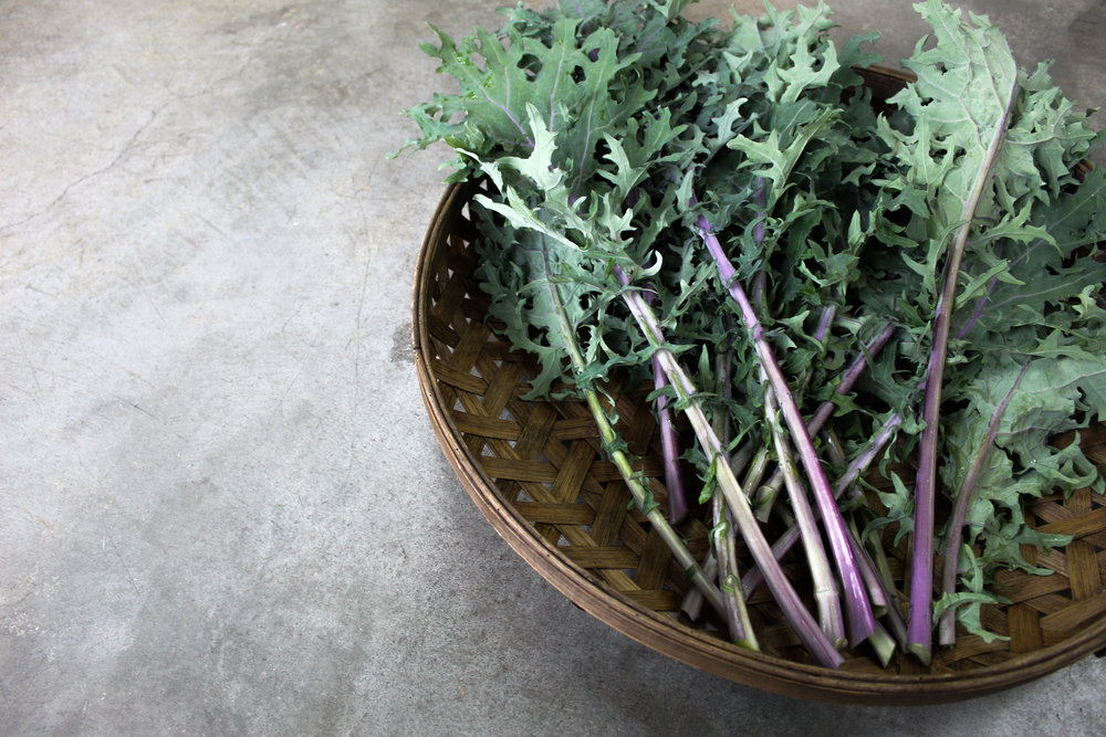 Kale 2.jpg