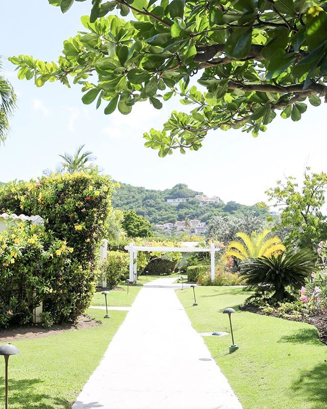 @spiceislandbeachresort is a lush tropical garden set on Grand Anse Beach, hailed as Grenada's most beautiful beach! Plus having your own private pool doesn't hurt either 🙌🏼 #spiceislandbeachresort #curriecotravels #thisiswhywetravel 📷: Currie Travel Advisor @saraheattaway