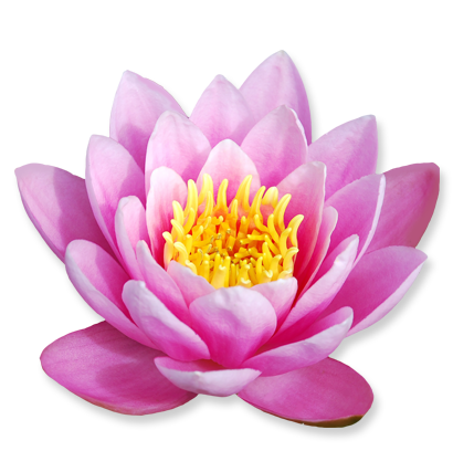 flower_07.png