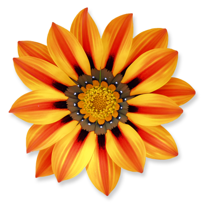flower_12.png
