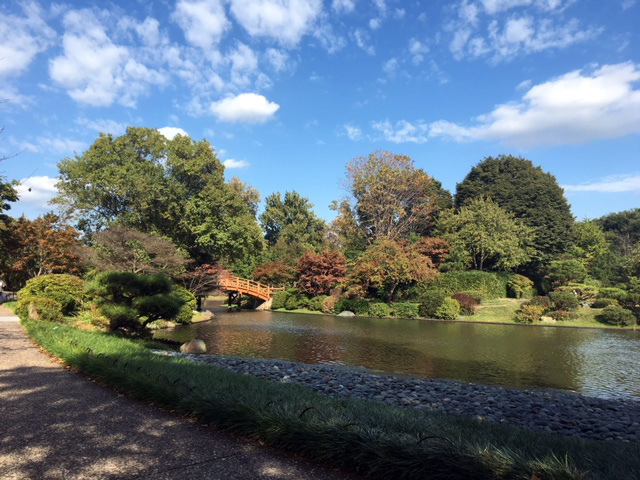 View of the bridge to the tea house island in the Japanese Garden.  Just look at that gorgeous blue sky! ©2016 by Erin Blumer.