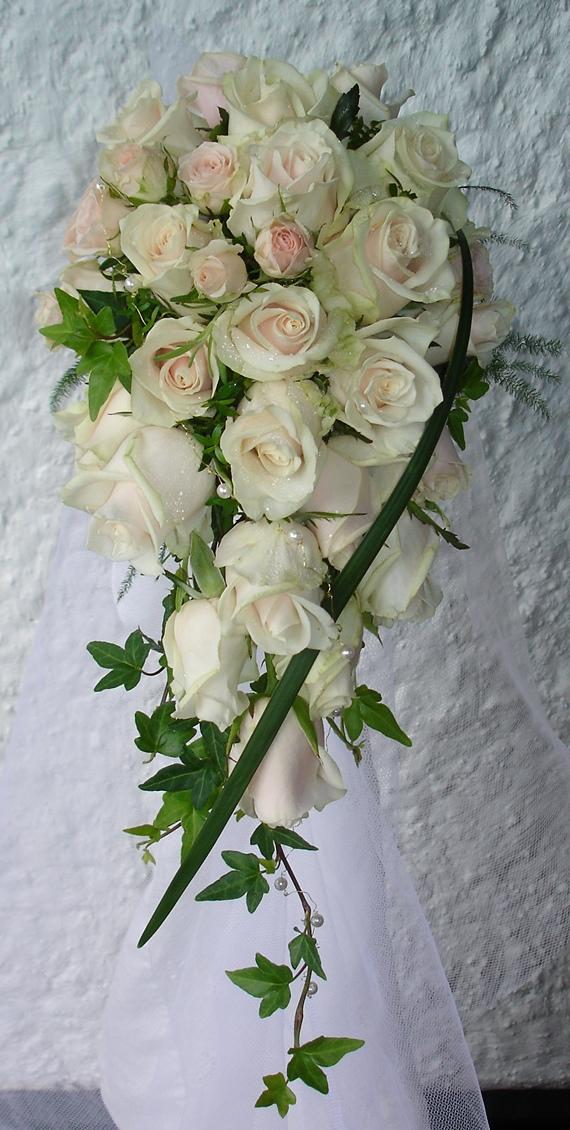 Rosa 28.jpg