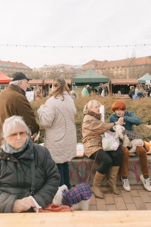 Farmers Market-12.jpg