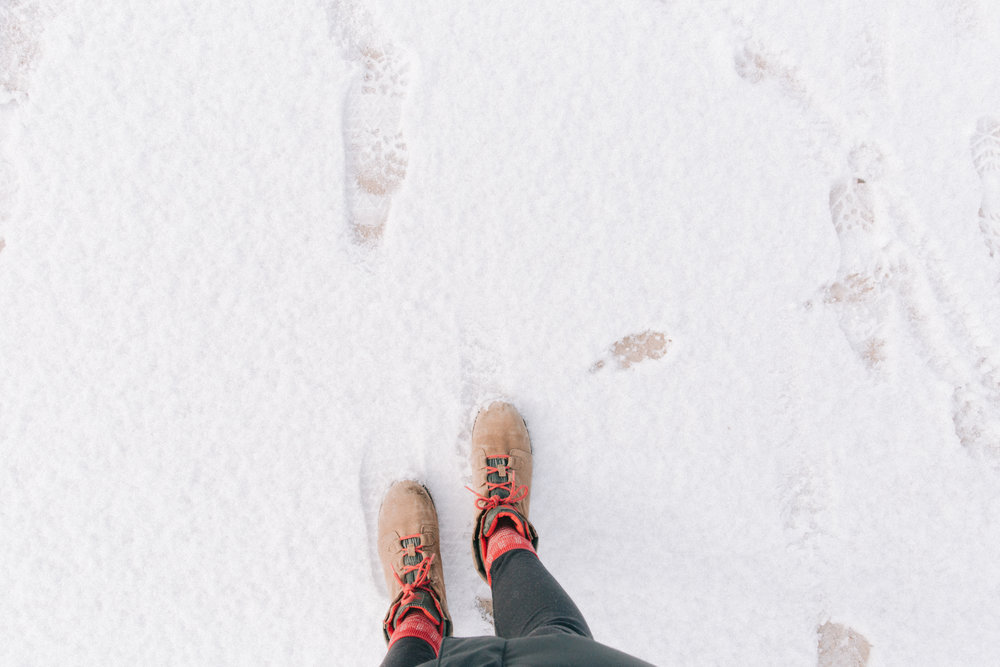 Winter-11.jpg