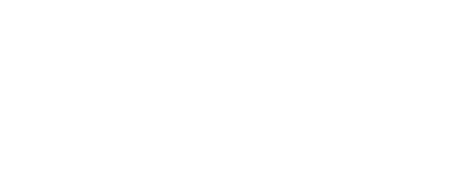 Texas Parking & Transportation Association