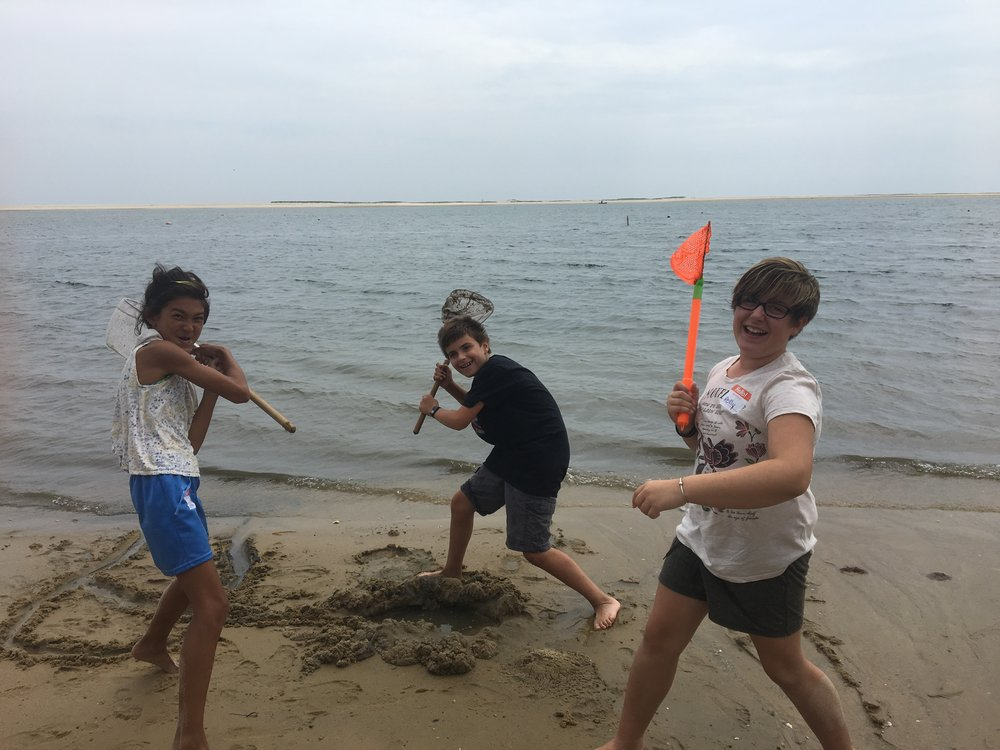 Group Workshops - New for Summer 2019: OPAK is offering private ocean workshops for day camps, overnight camps, community centers and more.