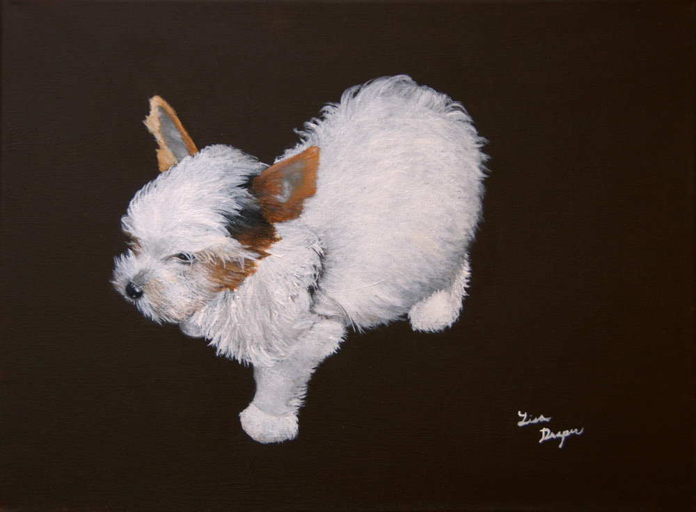 """Booboo"", Acrylic on stretched canvas"