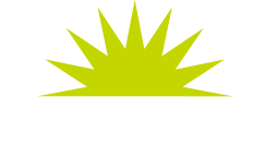 Green Flash San Jose Broofest