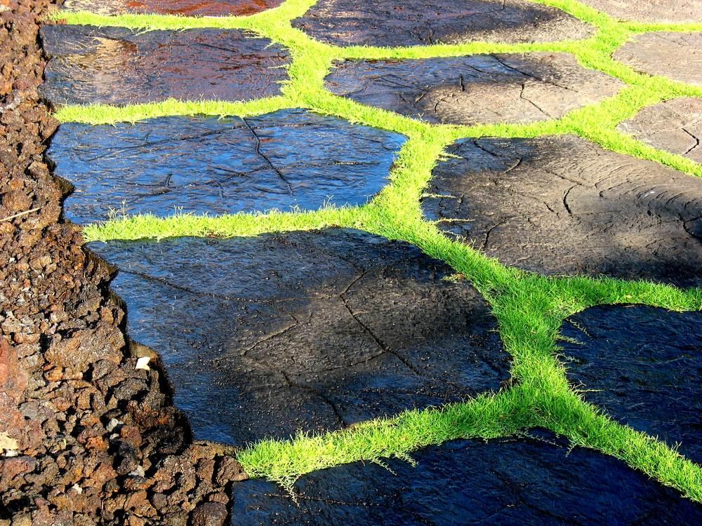 BOLTON INC_Concrete grass and lava rock driveway_Kona Hawaii.jpg