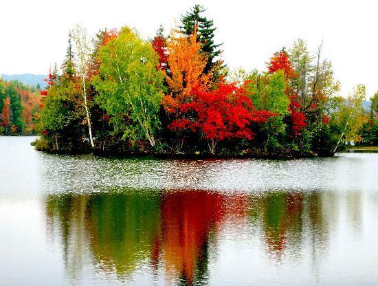 fall-colors-in-s-e-adirondacks.jpg