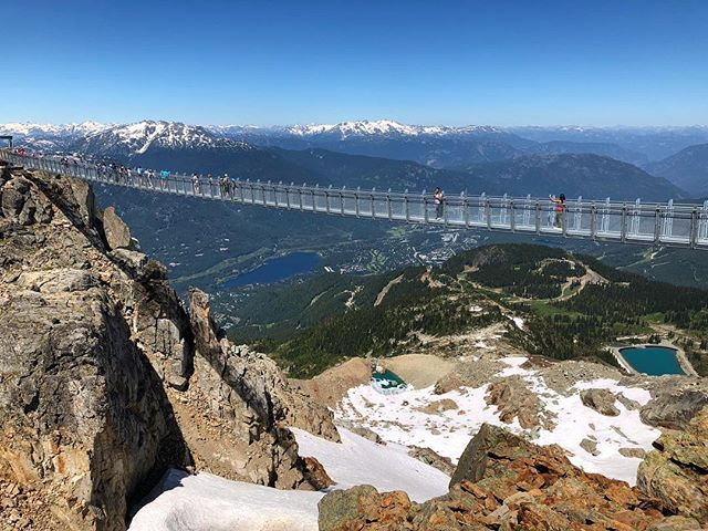The new suspension bridge on the top of Whistler mountain. Only 2 weeks old.