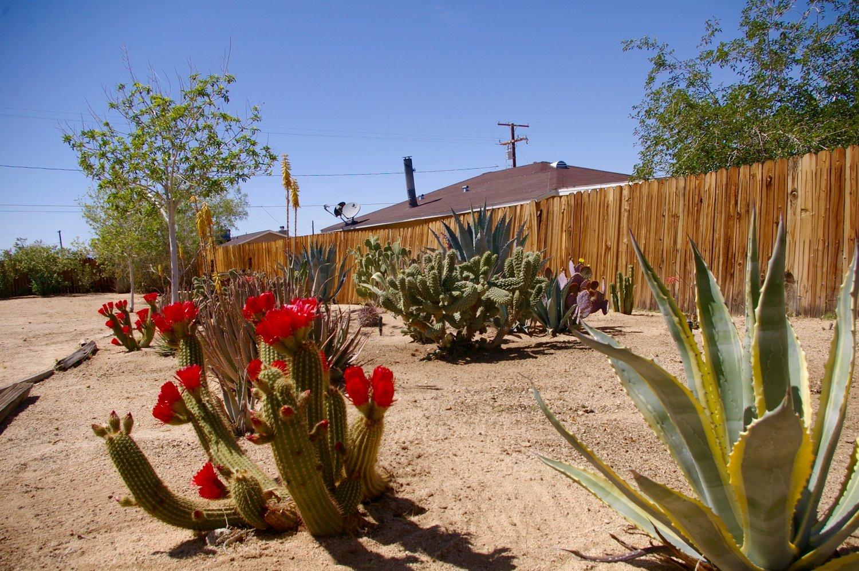 Rent29 - Furnished Rental Homes | 29 Palms | Joshua Tree | Vacation ...
