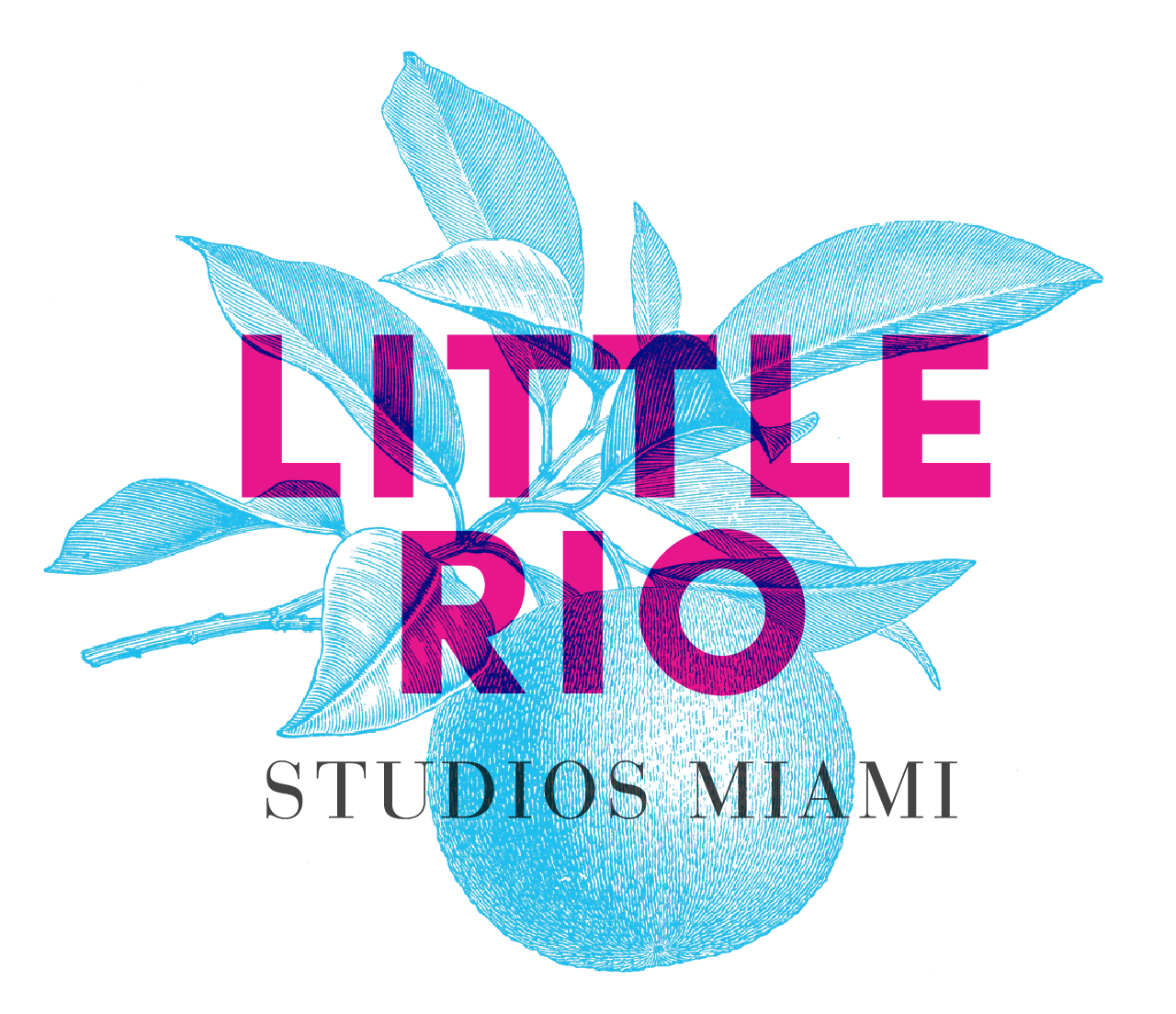 Little Rio Photo and Rental Studio Miami