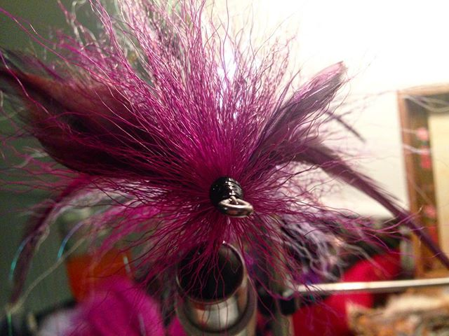 She a little wide but she push water #flytying #muskyflies #pigfarmink