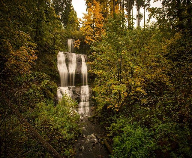 Oregon fall colors and a waterfall! Some of the best things. Loved the amazing fall colors that came with this year's fall! This photo was shot with the Canon 6D not the S8. #oregon #canon6d #s8 #fall