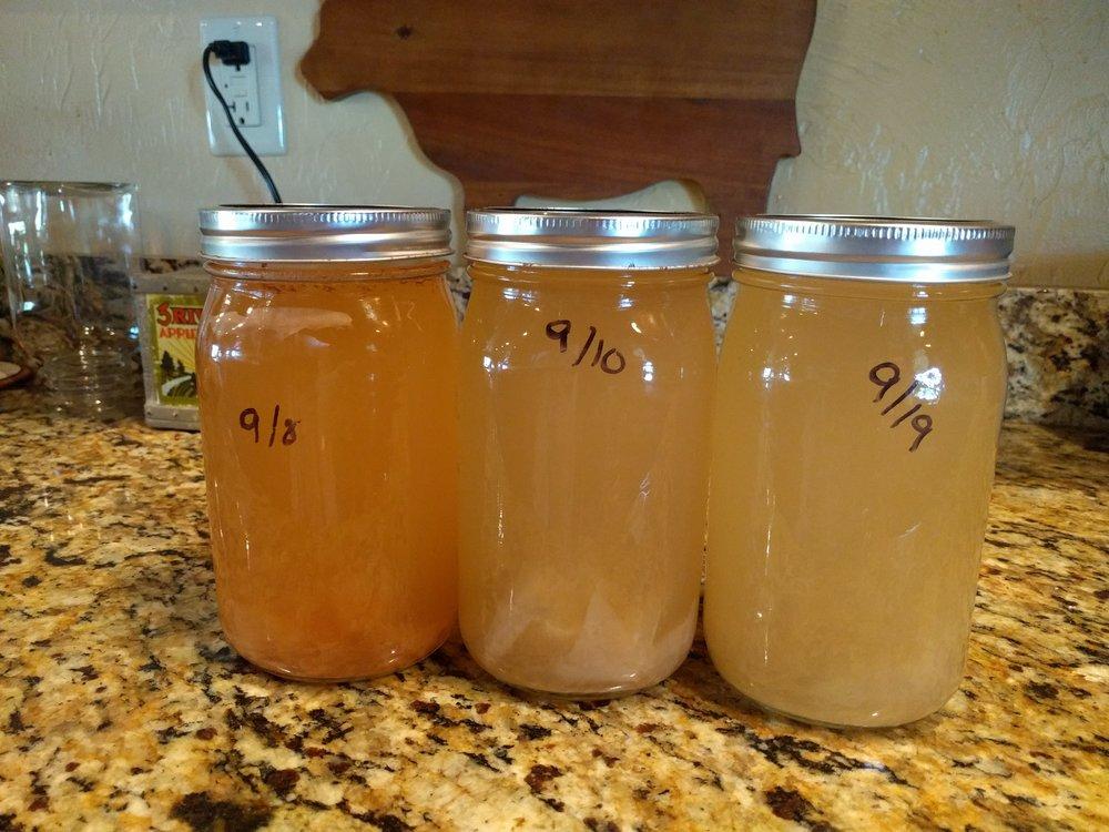 Apple cider vinegar with mother.