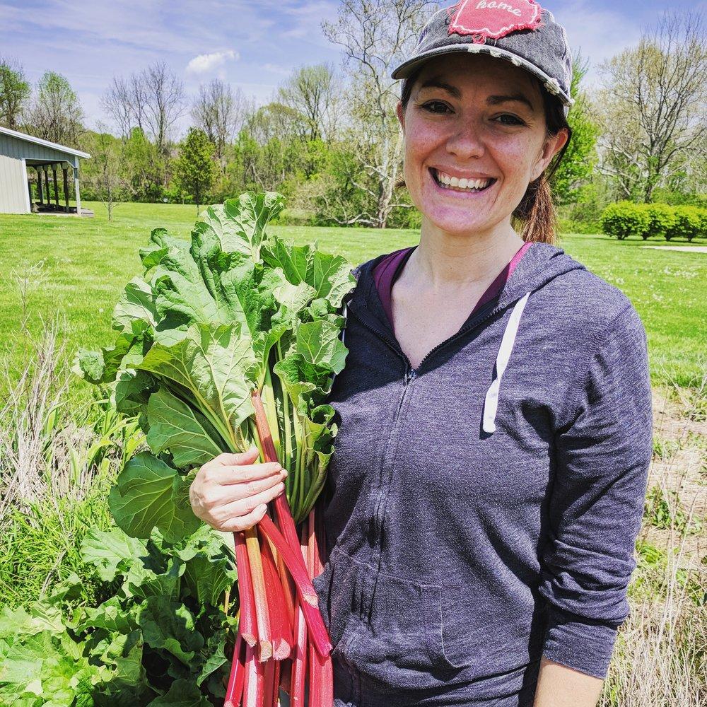First harvest of the season! Rhubarb!