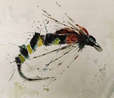 Large Fly Study A by David Rawlinson