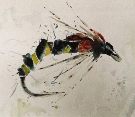 Large Fly Study A by David Rawlinson