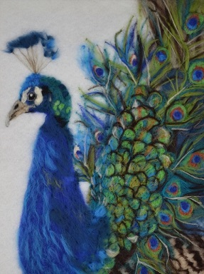 A needle felted painting of a peacock by Pauline Crouse.