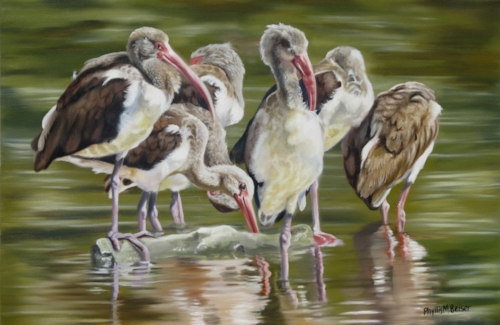 """Fledgling Ibis Group"" by Phyllis Beiser will be featured in our gallery within the Gallery, The Roost, along with three more paintings below."