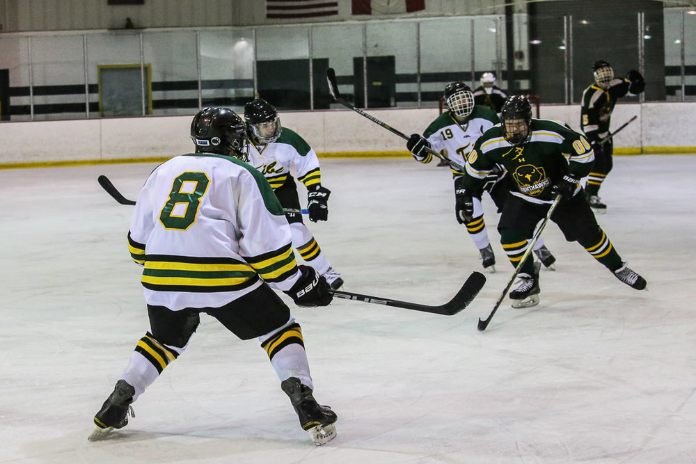 20171110-hockey-game-8.jpg