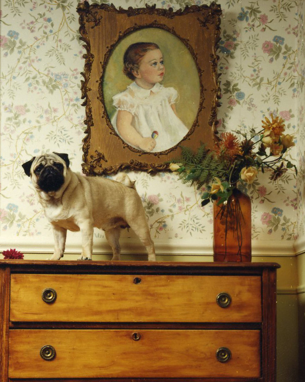 Natalie Shriver,  Boy Pet,  2009