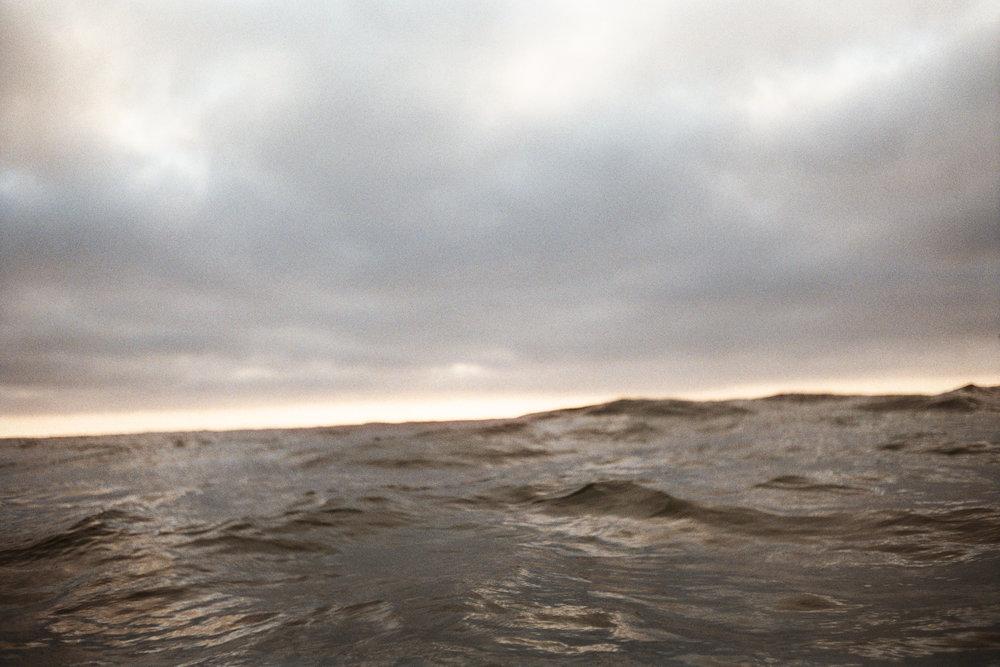 DTRTS Surfy 2016AA019.jpg