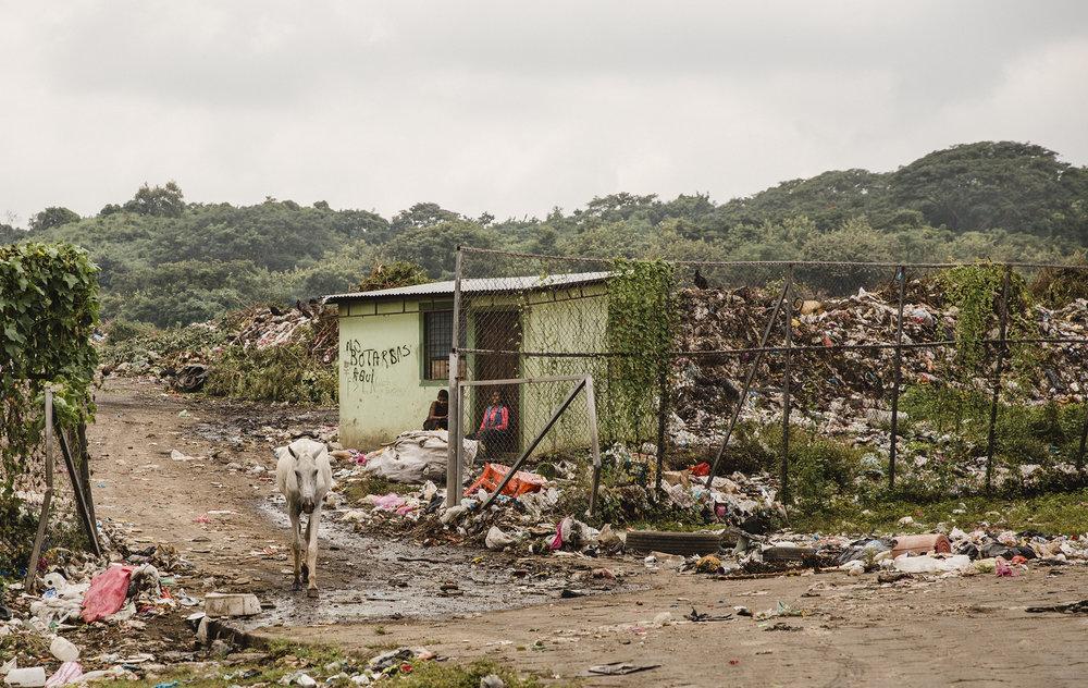 trash dump cropped RESIZED.jpg