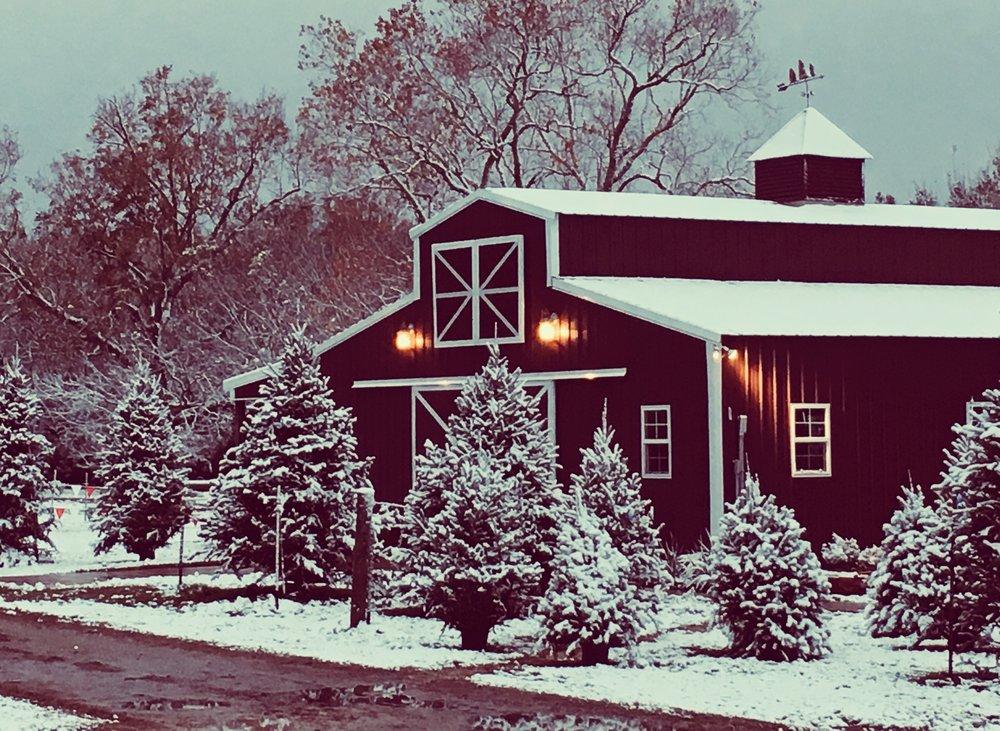 Houston Christmas Wedding Barn.jpg
