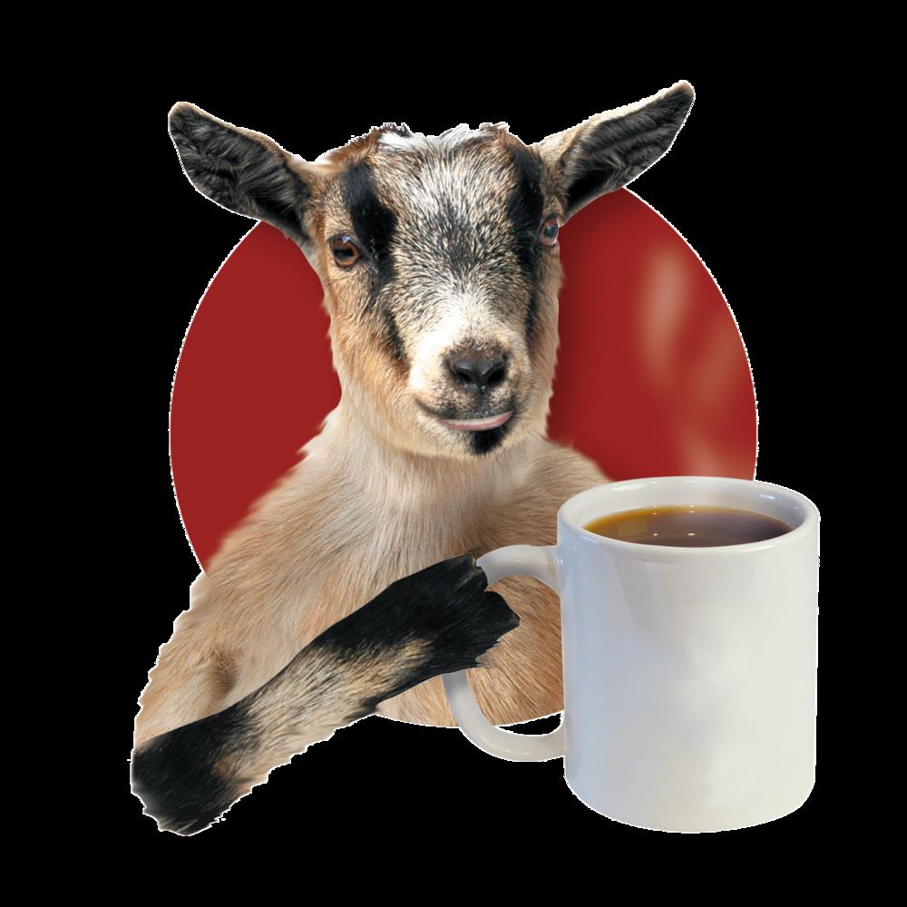 current goat blank mug - Copy.png