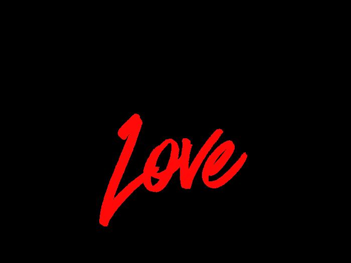 Carnival of Love LM December 2017 Charity Partner