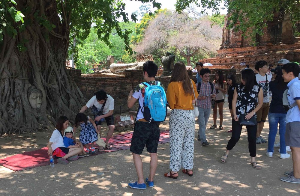 Most photographed scene in Ayutthaya