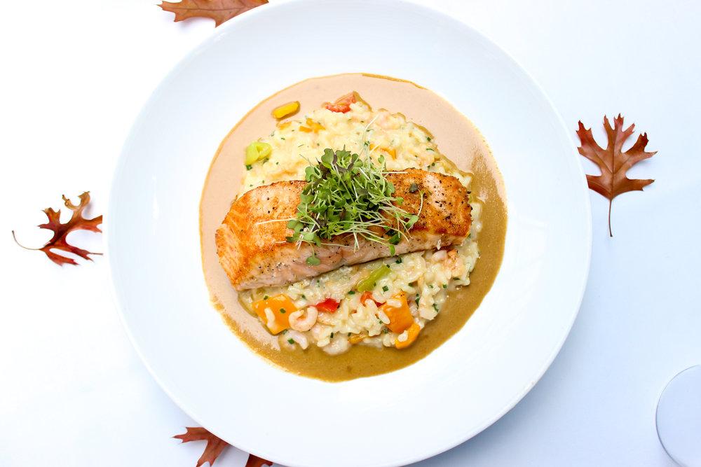Salmon-1-10.jpg