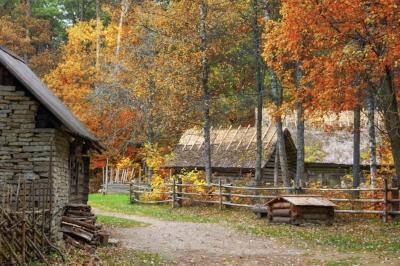Estonian farm in autumn forest