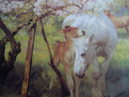 (mare and foal in orchard)