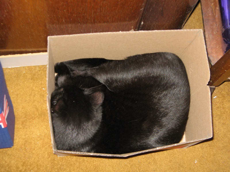 Nurturing his lifelong obsession with boxes