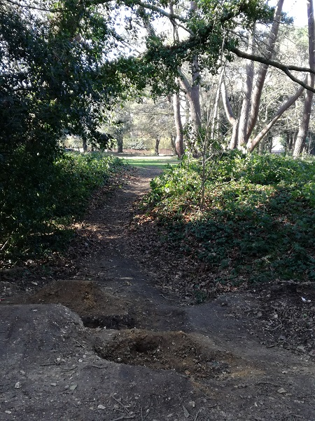 Path to park