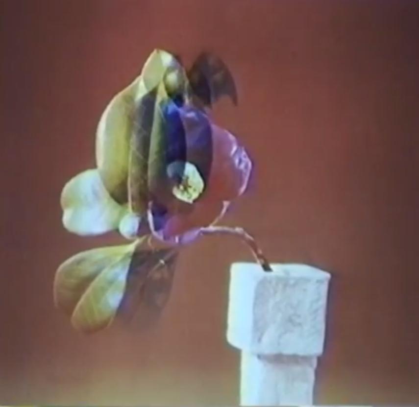 Ikebana #5, 1994