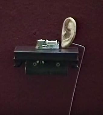 Ear, 1994