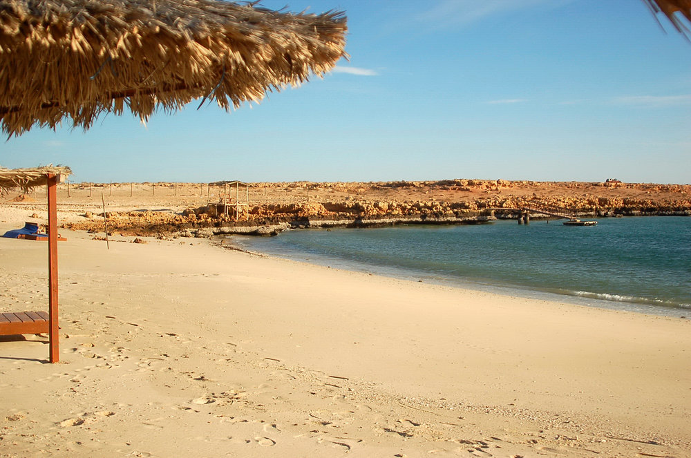 OMAN - Turtle beach resort.JPG