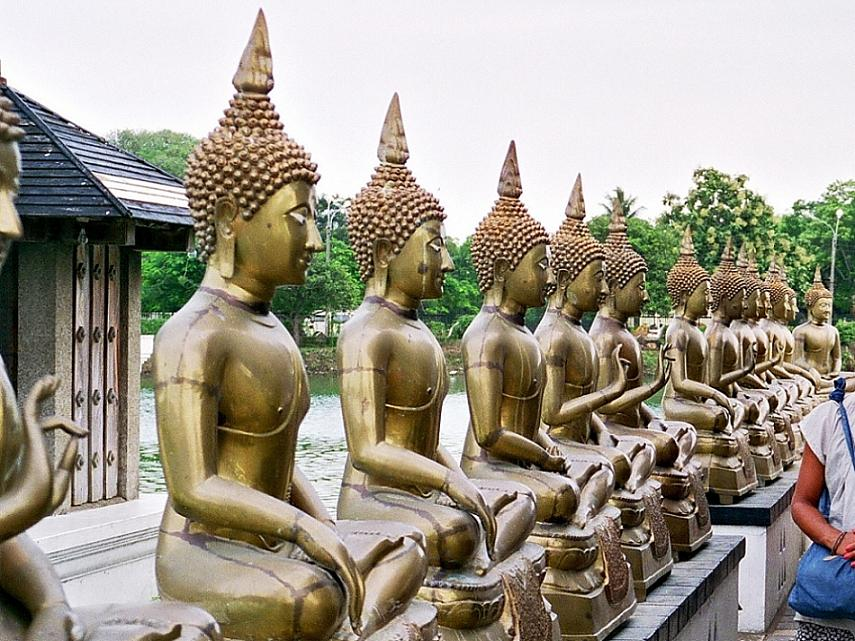 BUDDHA STATUES AT A TEMPLE IN COLOMBO.jpg