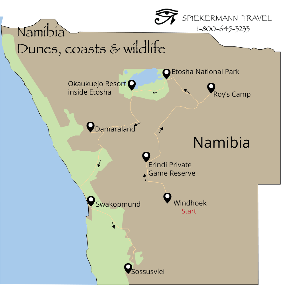 namibia, dunes,coast, & wildlife(oct 2017).png