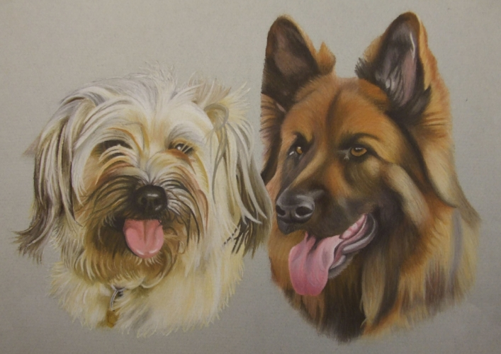 Purdy and Ace - Pyrenean Sheepdog and German Shepherd  - A3 - Soft pastel