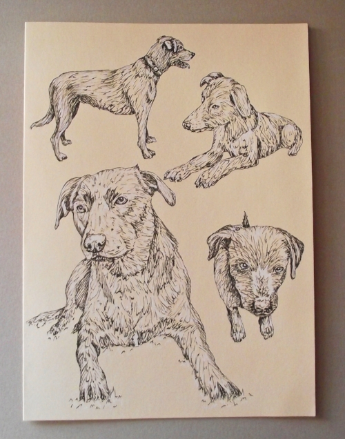 Special Card - A5 - Pen sketch - Specially commissioned card
