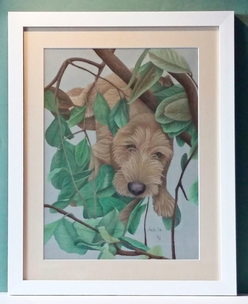 Biscuit - A3 - Soft Pastel - Framed