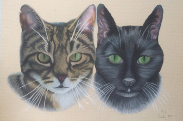 Thomas and Toby - Cats - 8inches x 12inches - Soft pastels