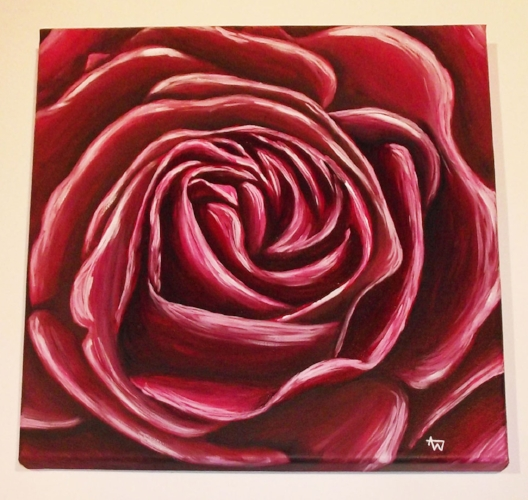 "Rose close-up - 12"" x 12"" - Box canvas"