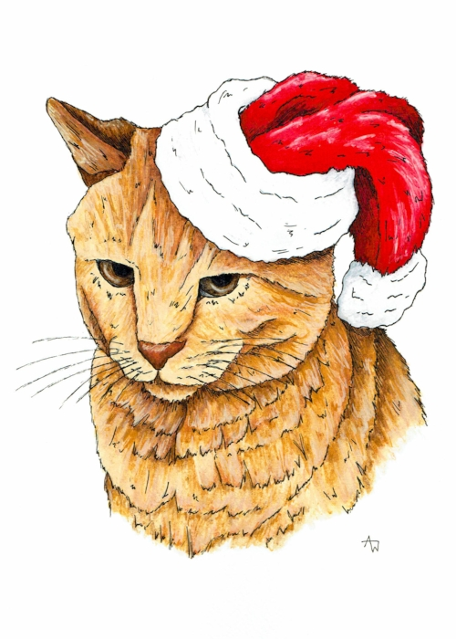 One of the most recent Christmas cards - Grumpy Cat - Pen and Watercolour - Available from the   shop